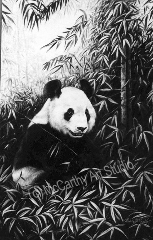 Magic Forest - Giant Panda